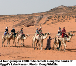 tour group riding camels in Egypt