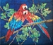 OUT ON A LIMB - Macaws Parrots